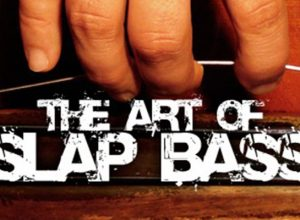 art of slap on double, acoustic, upright, doghouse, bullfiddle bass